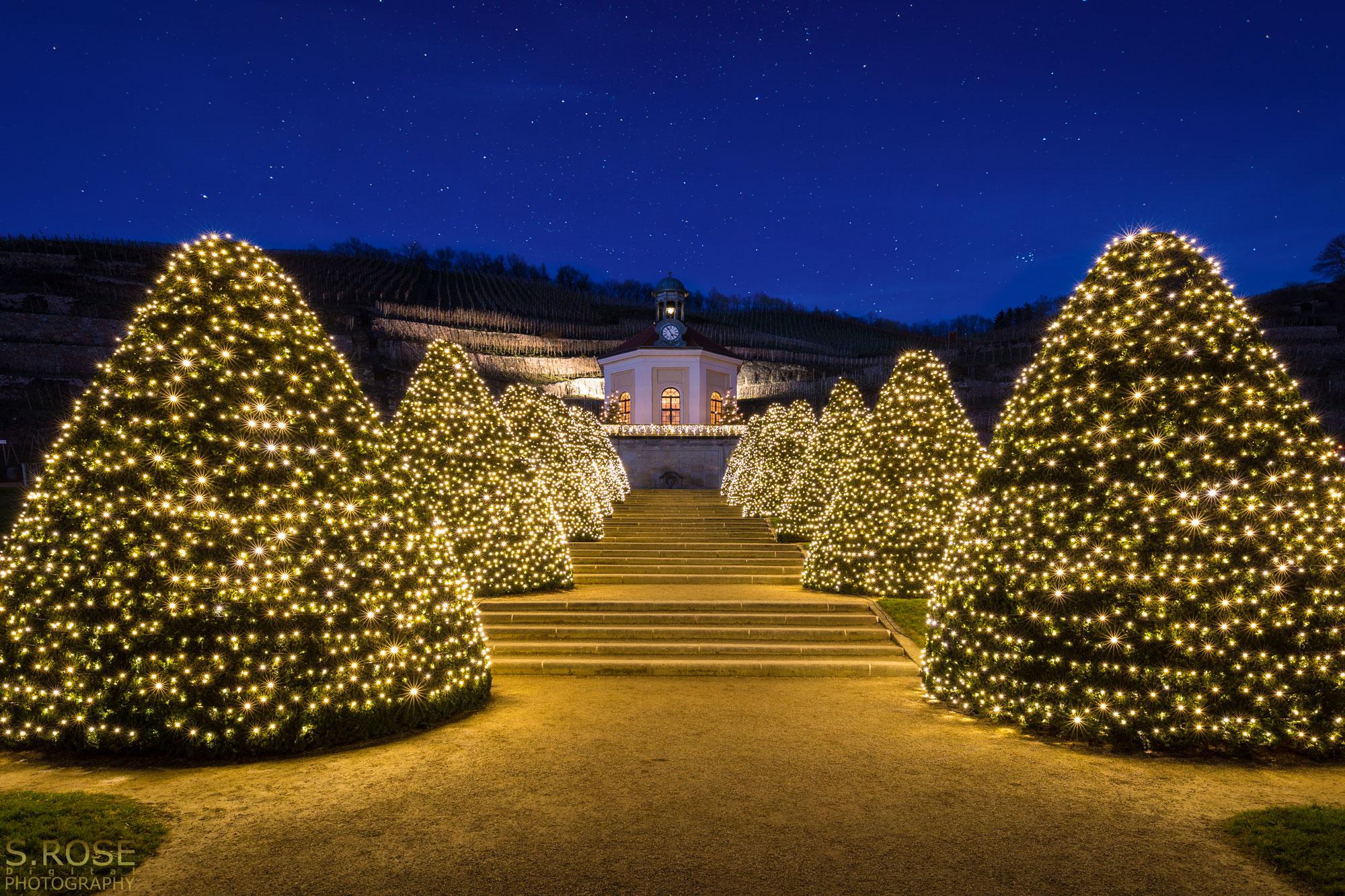 Wackerbarth zu Weihnachten - S.Rose Fotografie